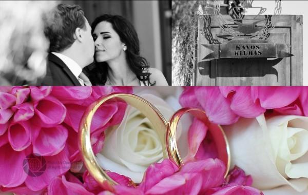 N&P Wedding Day/Wedding Photography